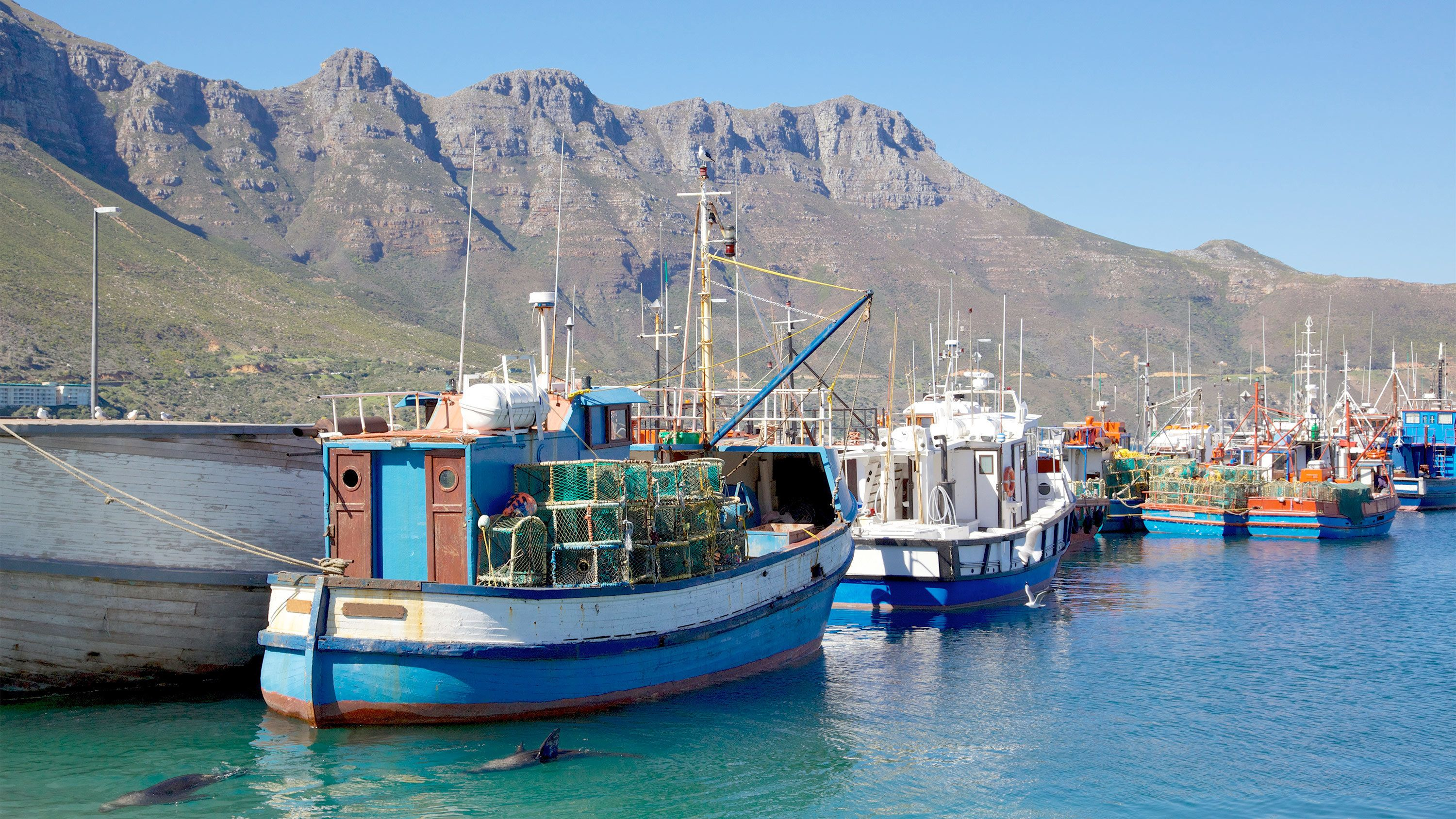 Landscape view of the south african fishing boats