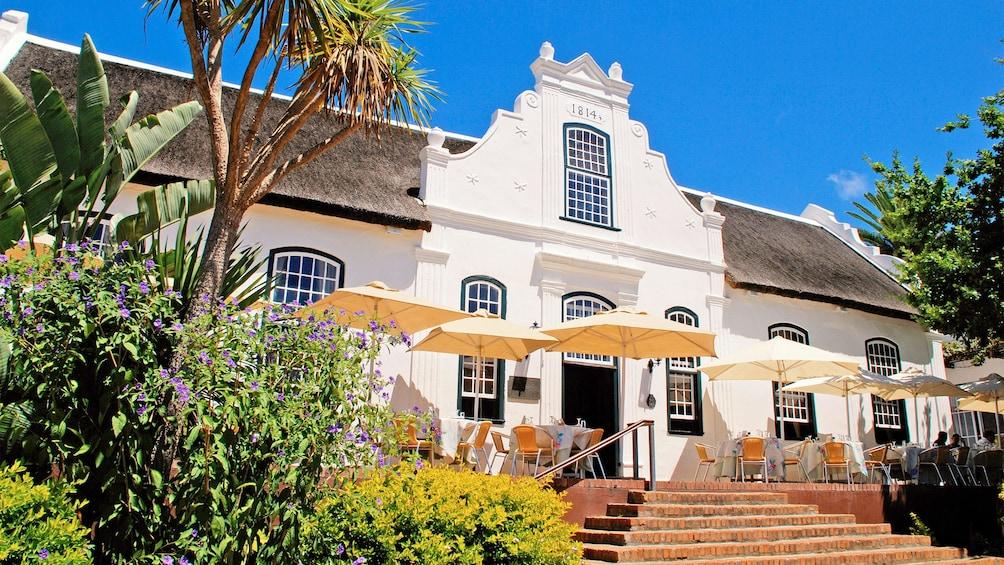 Apri foto 5 di 5. Winelands tour in Cape Town, South Africa