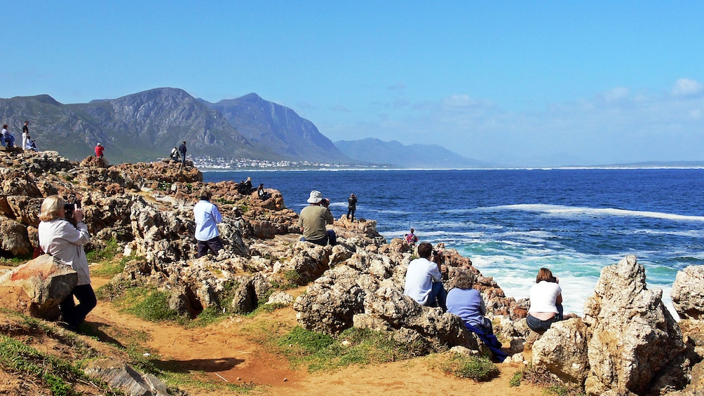Show item 2 of 5. People whale watching at the beach in Hermanus