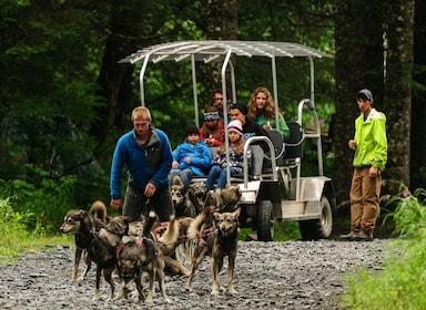 Kennel Tour Cart Ride.jpg