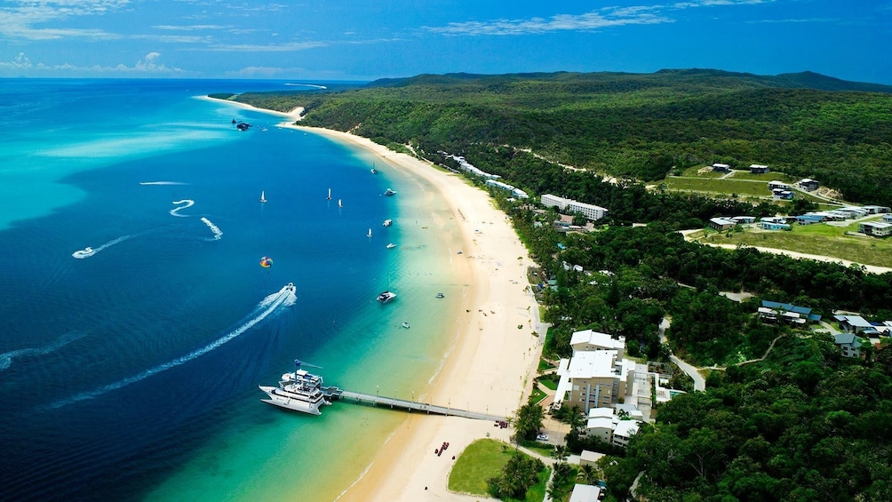 Show item 8 of 8. Moreton Island Certified or Introductory Scuba Diving Tour