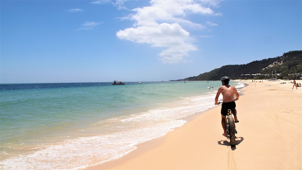 Show item 3 of 8. Moreton Island Certified or Introductory Scuba Diving Tour