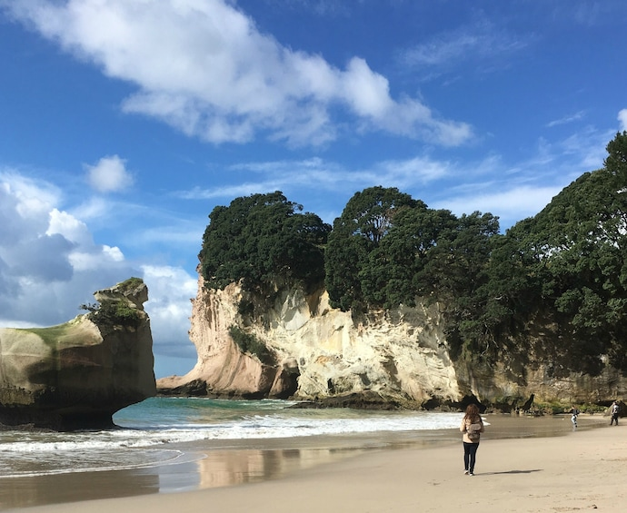 Show item 10 of 10. Coromandel Cathedral Cove Land & Boat Tour(Private Vehicle)