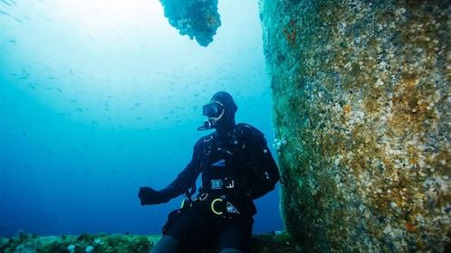 Diver waiting underwater in New Zealand