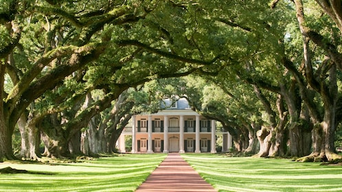 Estate grounds with red brick walkway to house and large trees flanking either side in Oak Alley, New Orleans.