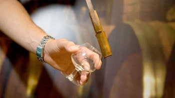 Museo Viva Tequila y experiencia de degustación