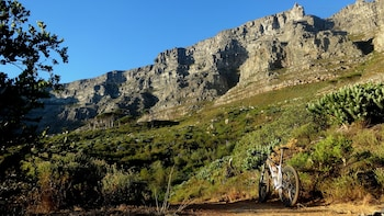 Avventura di mezza giornata a Table Mountain in bici