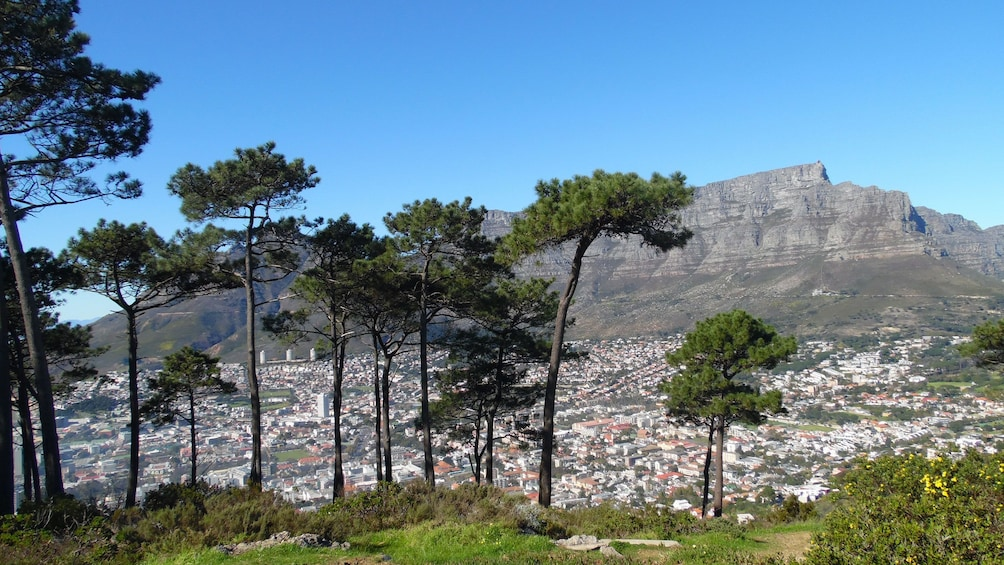 Apri foto 5 di 5. View of Table Mountain and the city below