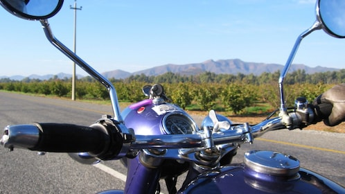 View from a motorcycle
