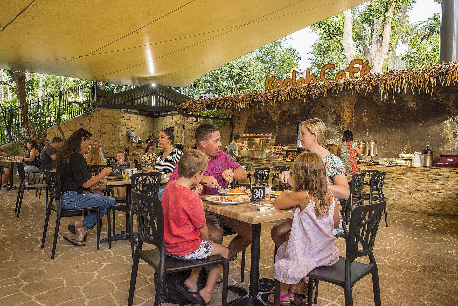 WILD LIFE Hamilton Island Breakfast With Koalas