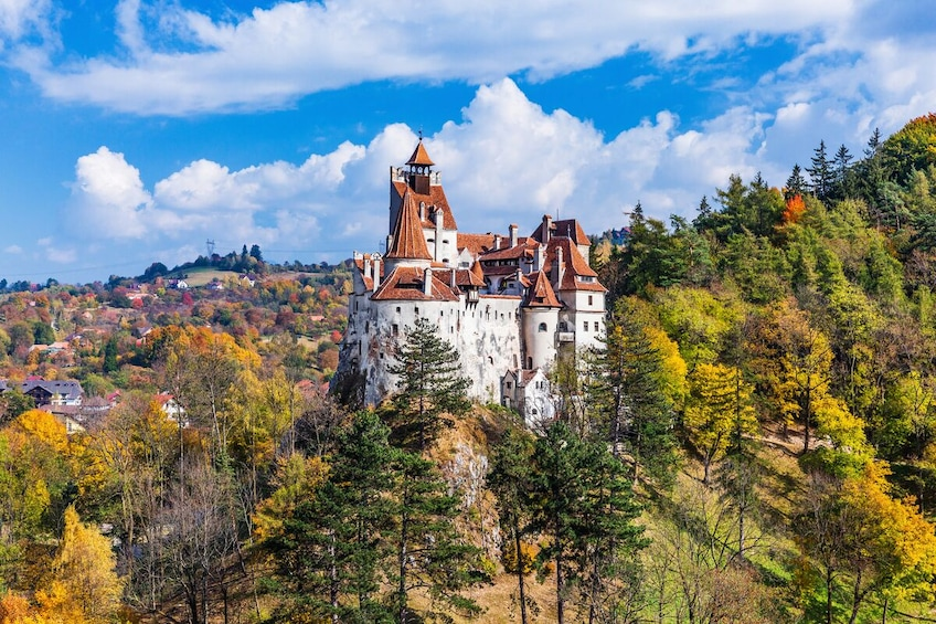 Show item 3 of 6. Extended Tour of Draculas Castle and Brasov in Transylvania