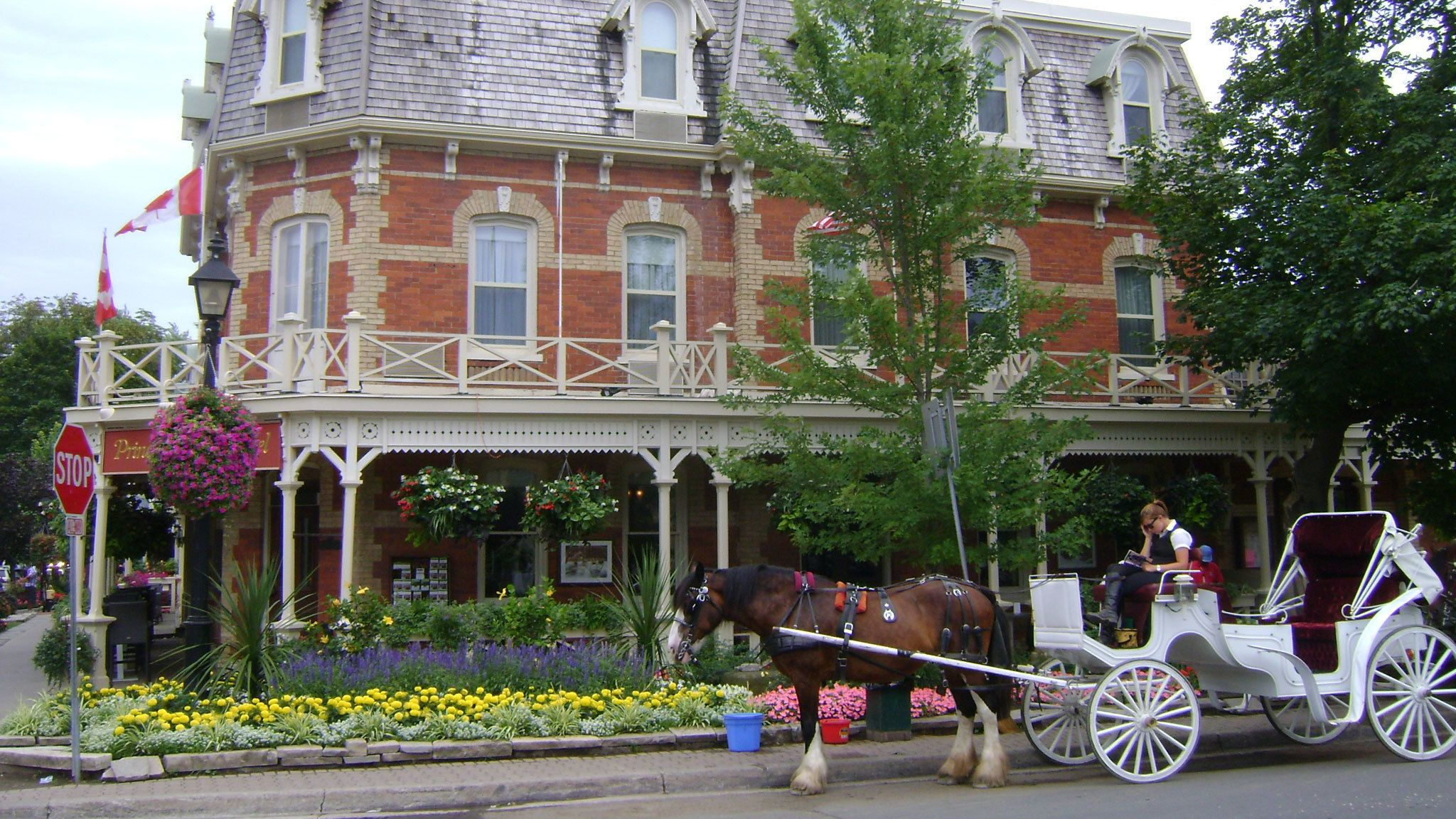 Horse drawn carriage outside of building at Niagara Falls
