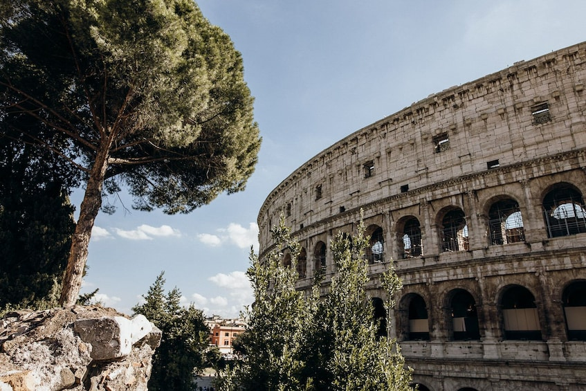 Skip-the-line: Colosseum & Forum Tour with Special Gladiator's Gate & Arena Floor Access