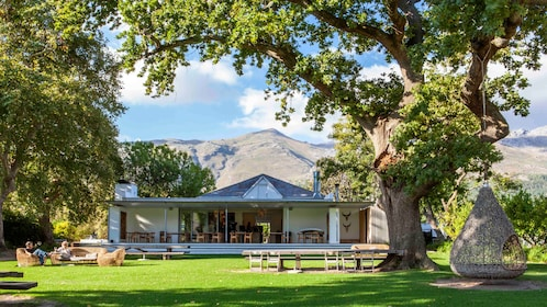 Small winery with a view of the mountains in Cape Town