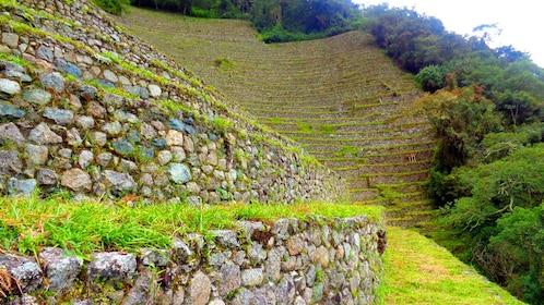 Terraced hill in Cusco Peru