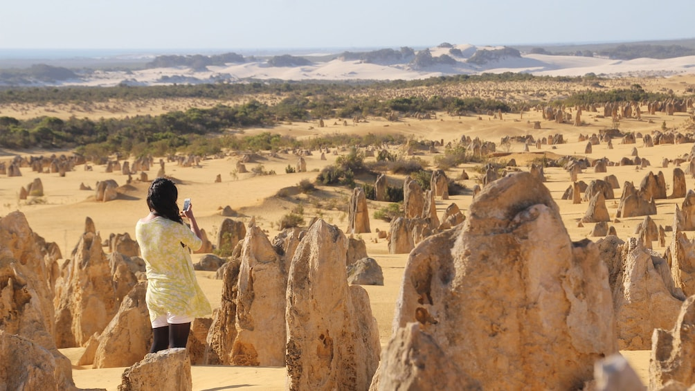 Show item 1 of 5. Pinnacles & Sandboarding Tour in Perth