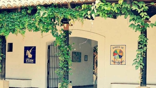 Antigua Guatemala and Coffee Plantation