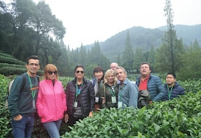 Private Tour of Lingyin Temple, Dragon Well Tea Plantation & West Lake