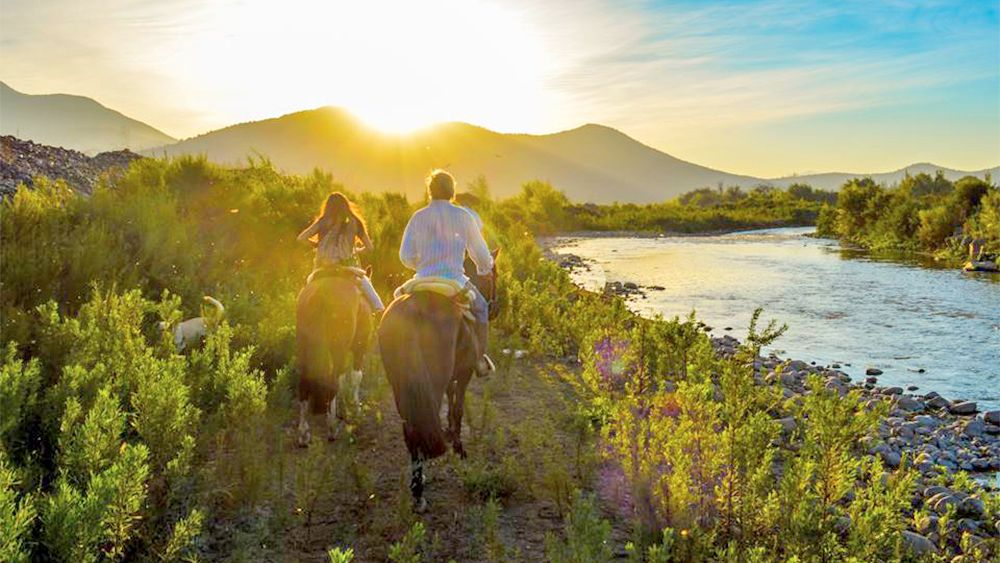 Isla de Maipo Horseback Tour & Wine tasting