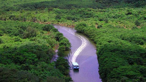 Boat on a river in Japan, aerial view