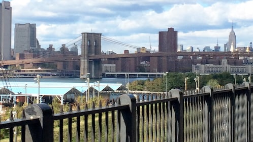 Day view of Brooklyn, New York