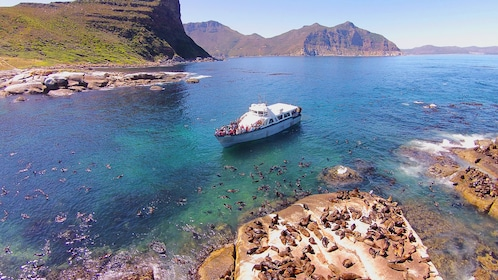 Tour boat off the coast of Cape Town