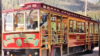 City, Totems & Wildlife Trolley Tour