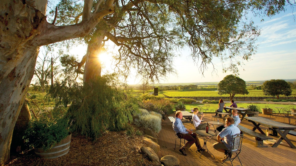 Show item 1 of 5. People eating at an outdoor area at a Vineyard