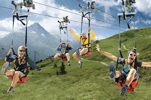Mount First & Grindelwald Adventure from Zürich