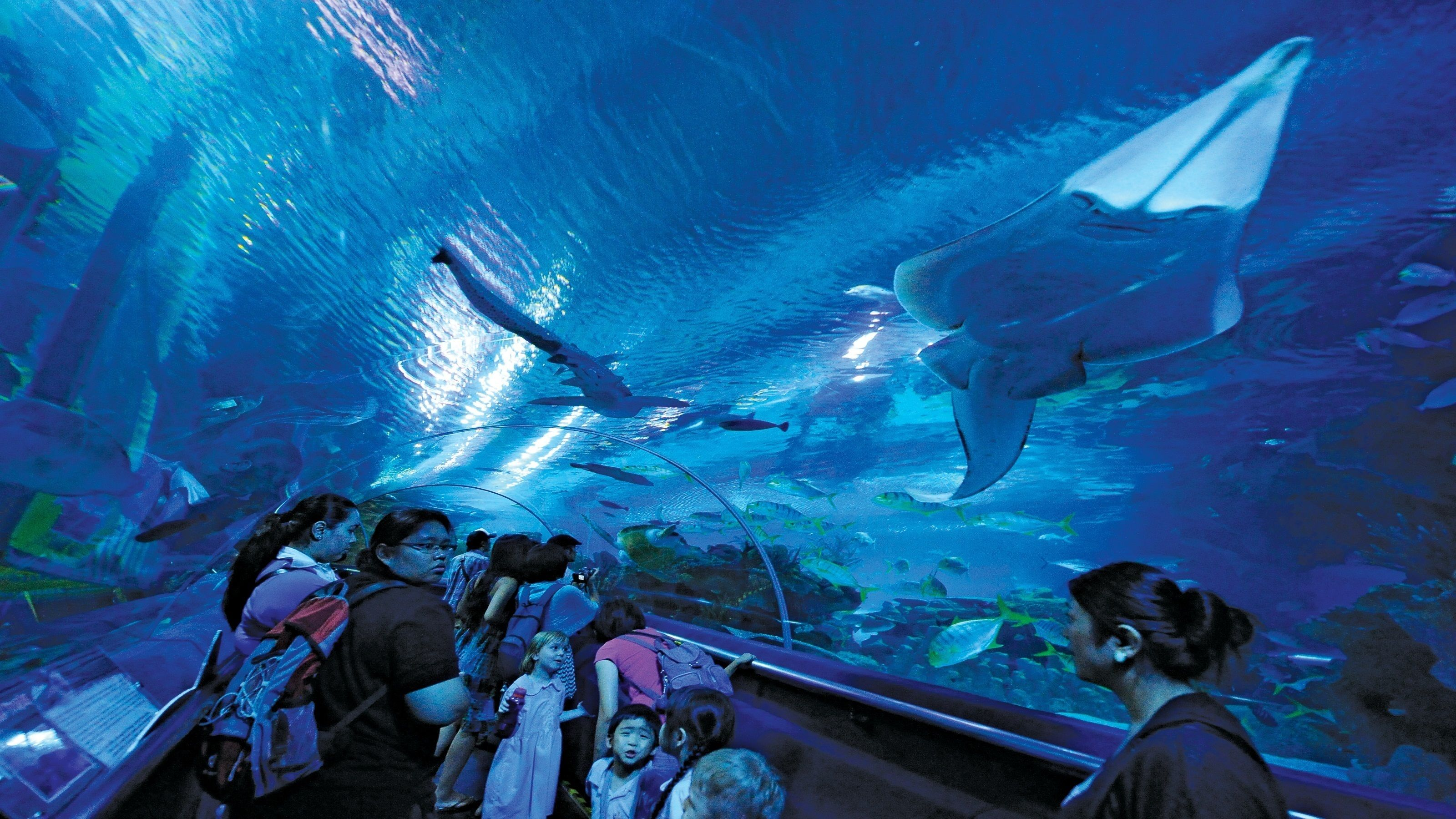 Full-Day Top 10 Highlights, Attractions & Landmarks Tour