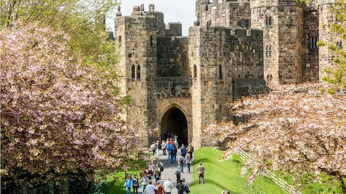 Full-Day Tour to the Scottish Borders & Alnwick Castle