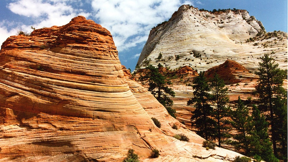 Show item 3 of 6. Colorful rocks at Zion National Park