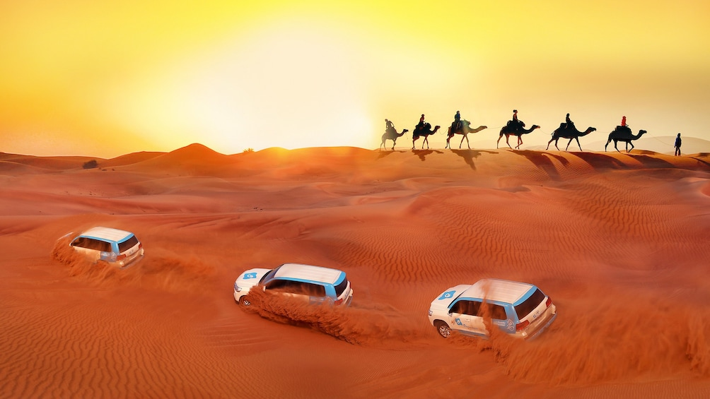 Show item 1 of 10. Premium Red Dunes & Camel Safari with BBQ at Al Khayma Camp