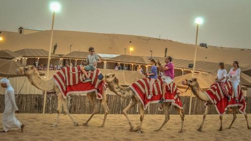 camel ride.jpg