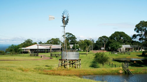 Ranch with windmill and pond in Sydney
