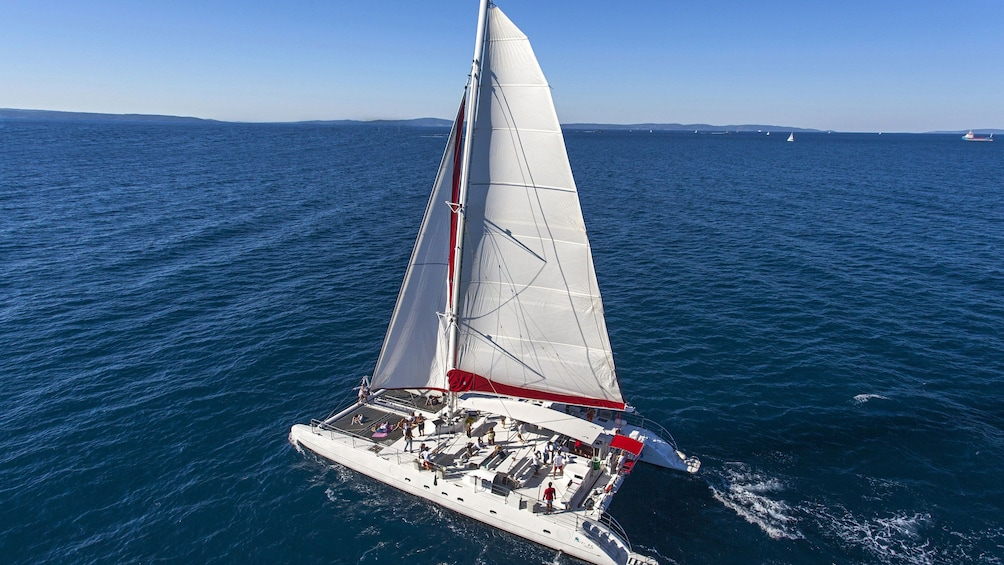 Show item 1 of 10. Ariel view of catamaran at full sail around Taboga Island