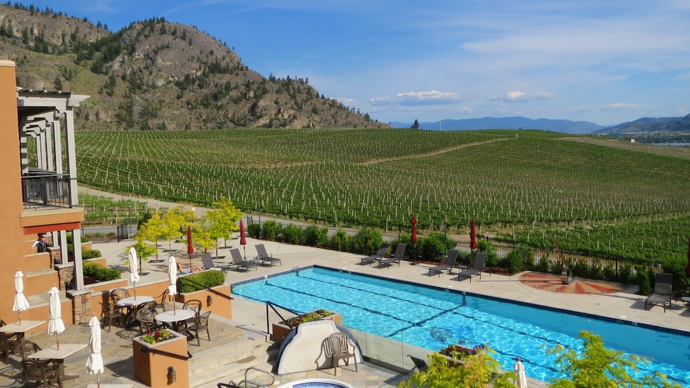 Show item 2 of 8. Swimming Pool next to a Winery