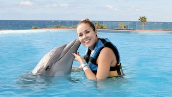 Swimming with Dolphins in Akumal