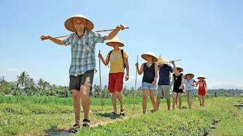 Local Farming & Agriculture Experience with Lunch