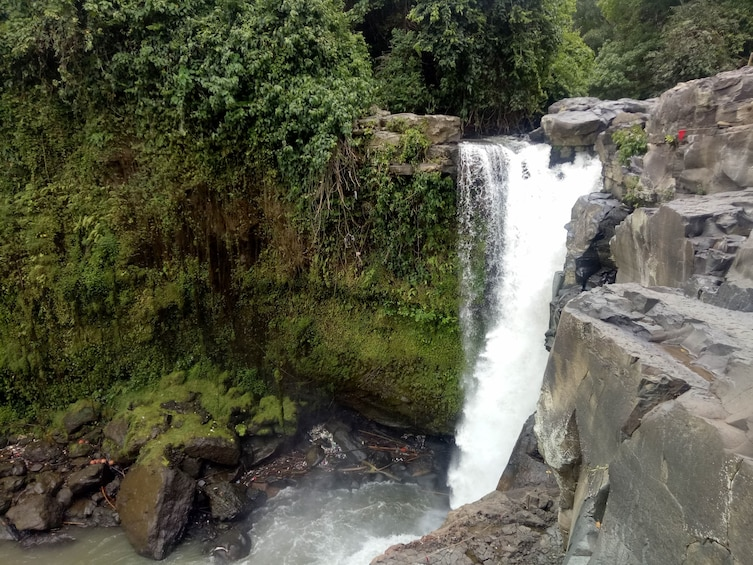 Show item 2 of 10. Bali Rice Field Trekking & Waterfall Private Tour with Lunch