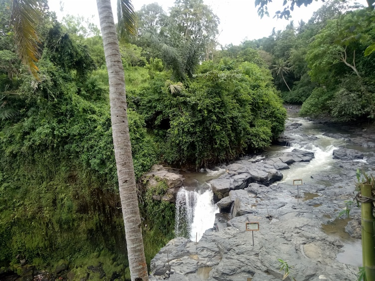 Show item 10 of 10. Bali Rice Field Trekking & Waterfall Private Tour with Lunch