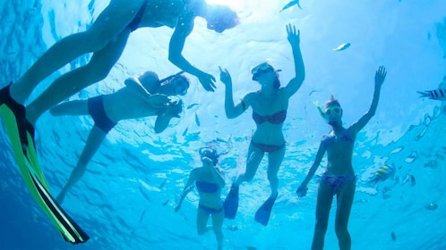 Group snorkeling on Phi Phi Island in Thailand