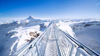 Excursion d'une journée à Glacier 3000 et Montreux