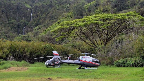 Two helicopters not in use in Hana