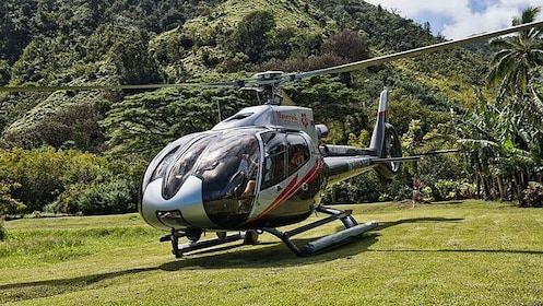 Helicopter not in use in Hana