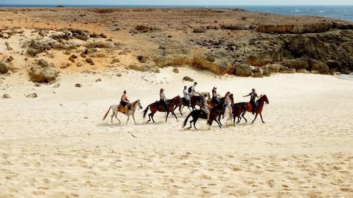 Scenic horseback riding tour in Aruba