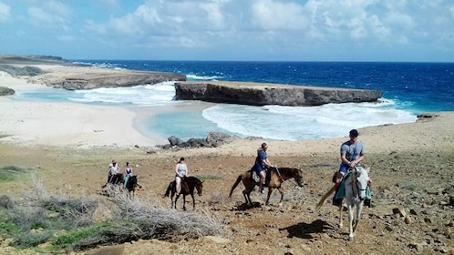 Aruba horseback riding tour