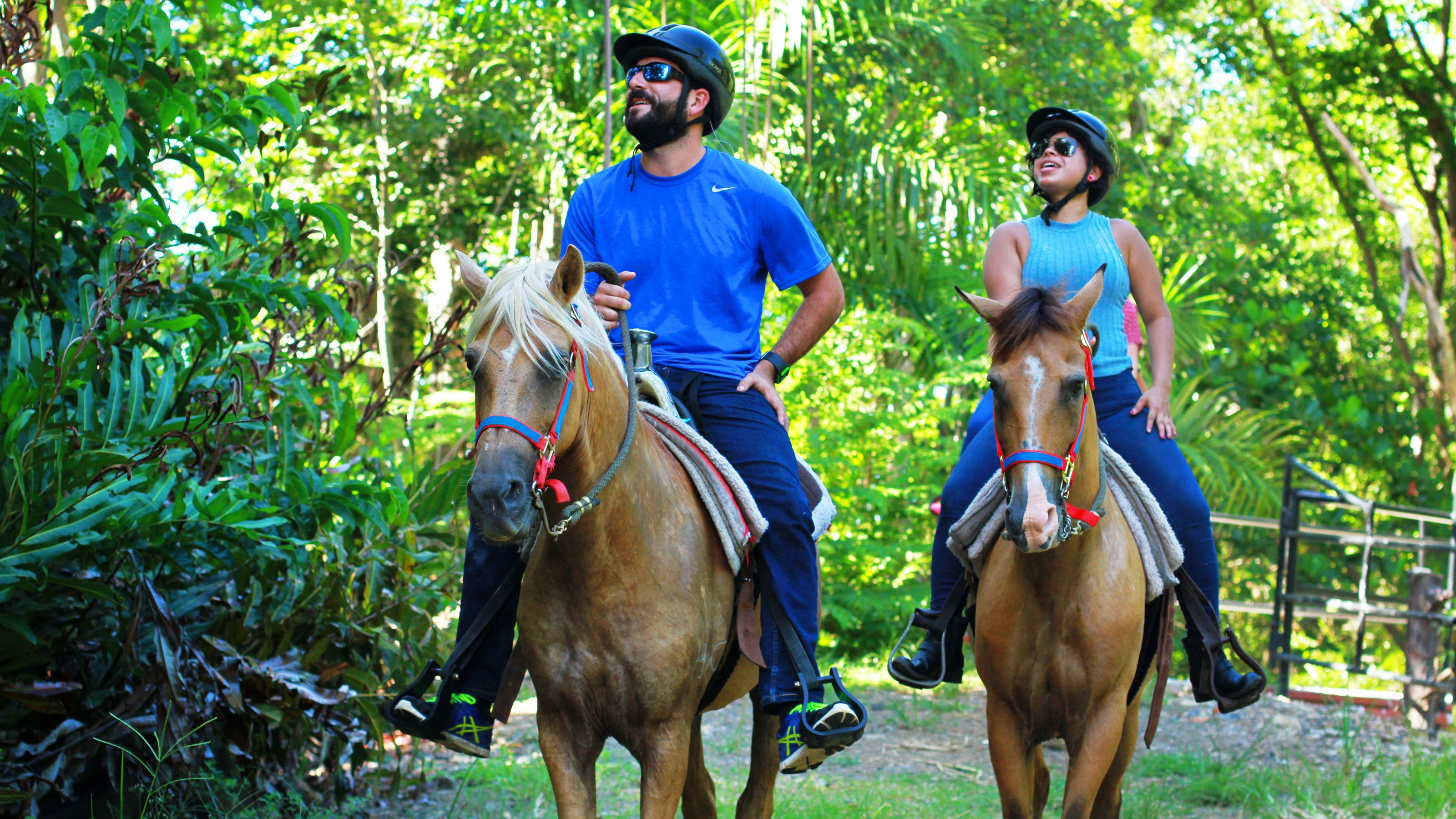 Guided Horseback Ride in El Yunque National Forest