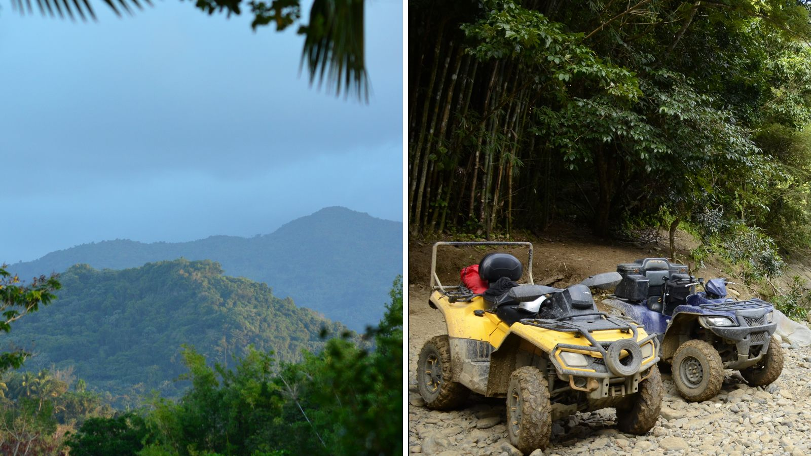 Self guided Nature Walk in El Yunque Forest &Quad bike Experience