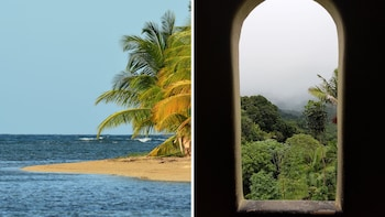 The Pristine Side of the Rainforest with Beach time